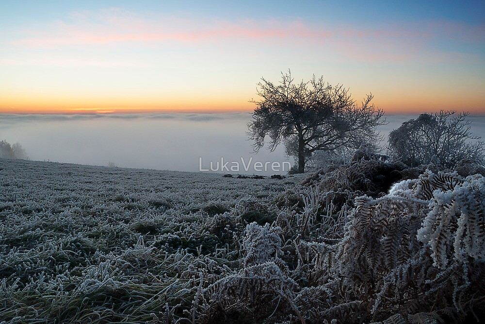 Cold morning by LukaVeren