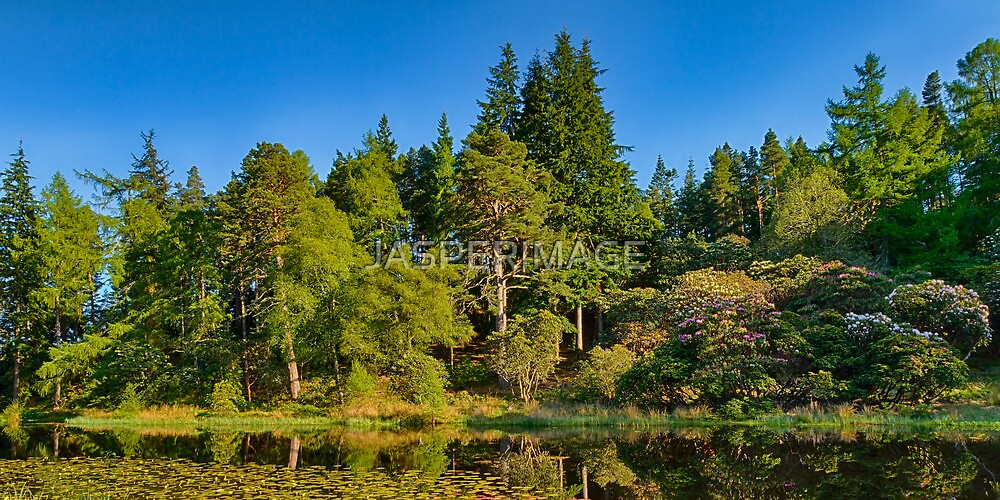 ELGIN SUMMERY BLACKHILLS POND by JASPERIMAGE