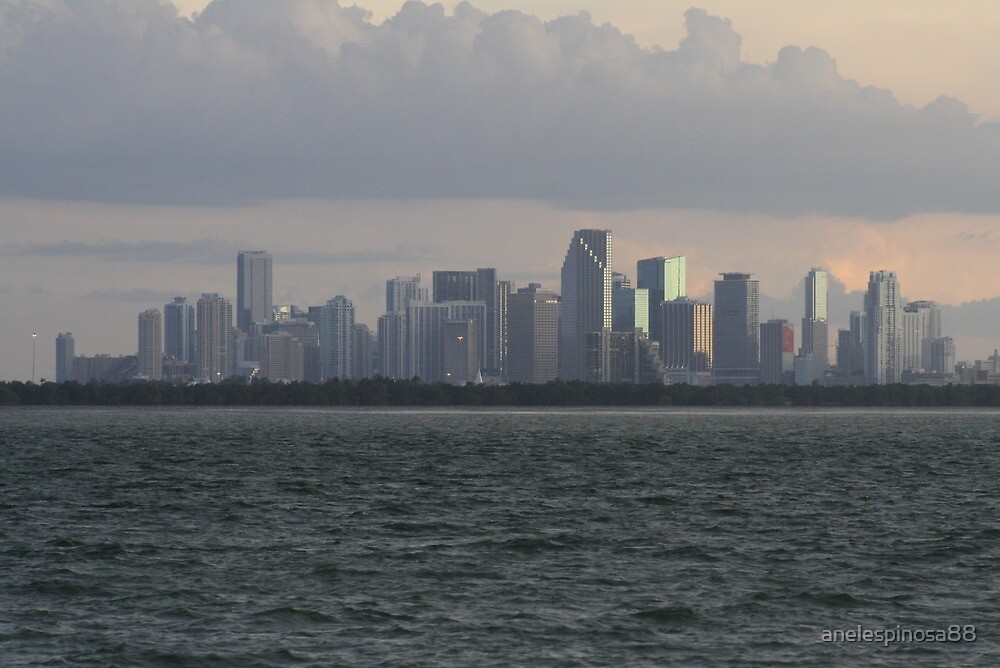 Miami Skyline  by anelespinosa88