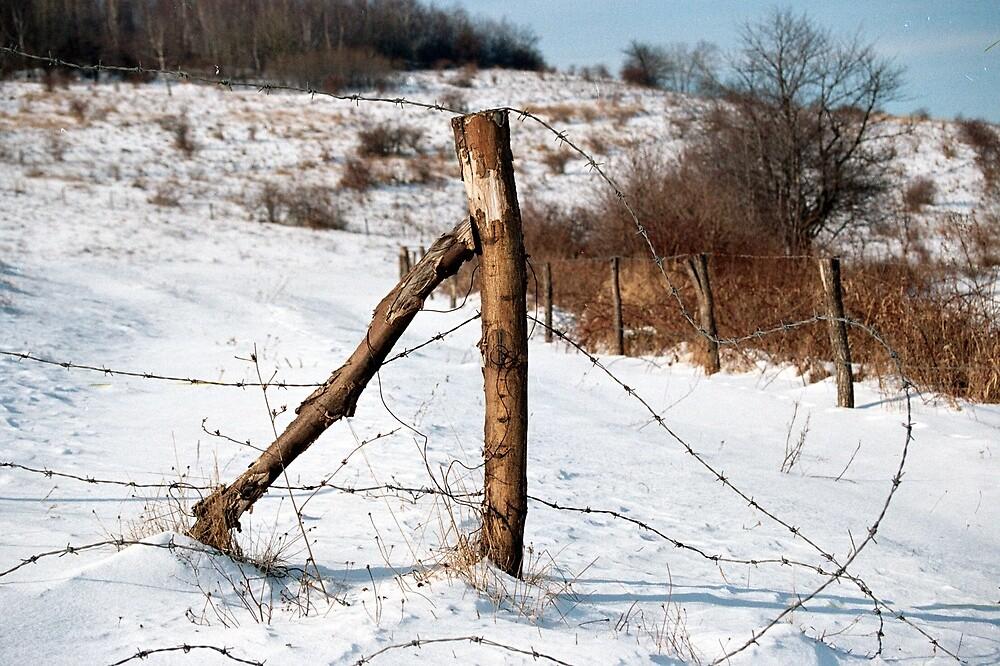 fence by verivela