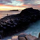 Fingal Headland  by Maxwell Campbell