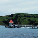 Akaroa, New Zealand by Jay Armstrong