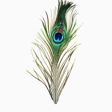 Peacock by Adamsart