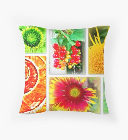 Highlights of the day... Throw Pillow