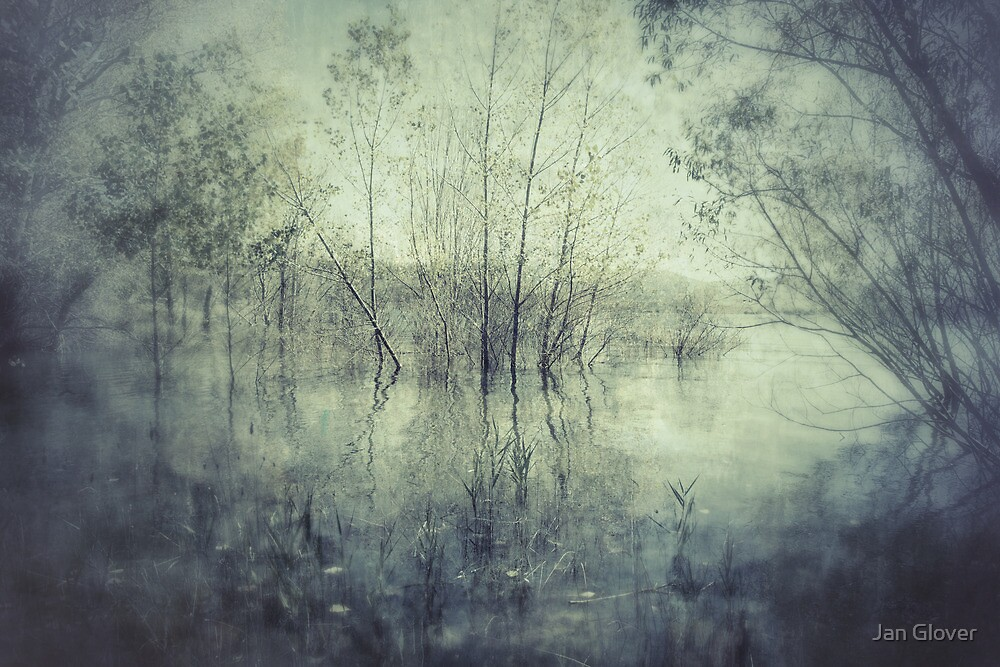 On the edge of the lake by Jan Glover