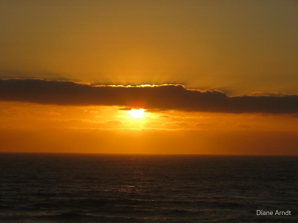 A Waldport, Oregon Sunset by Diane Arndt