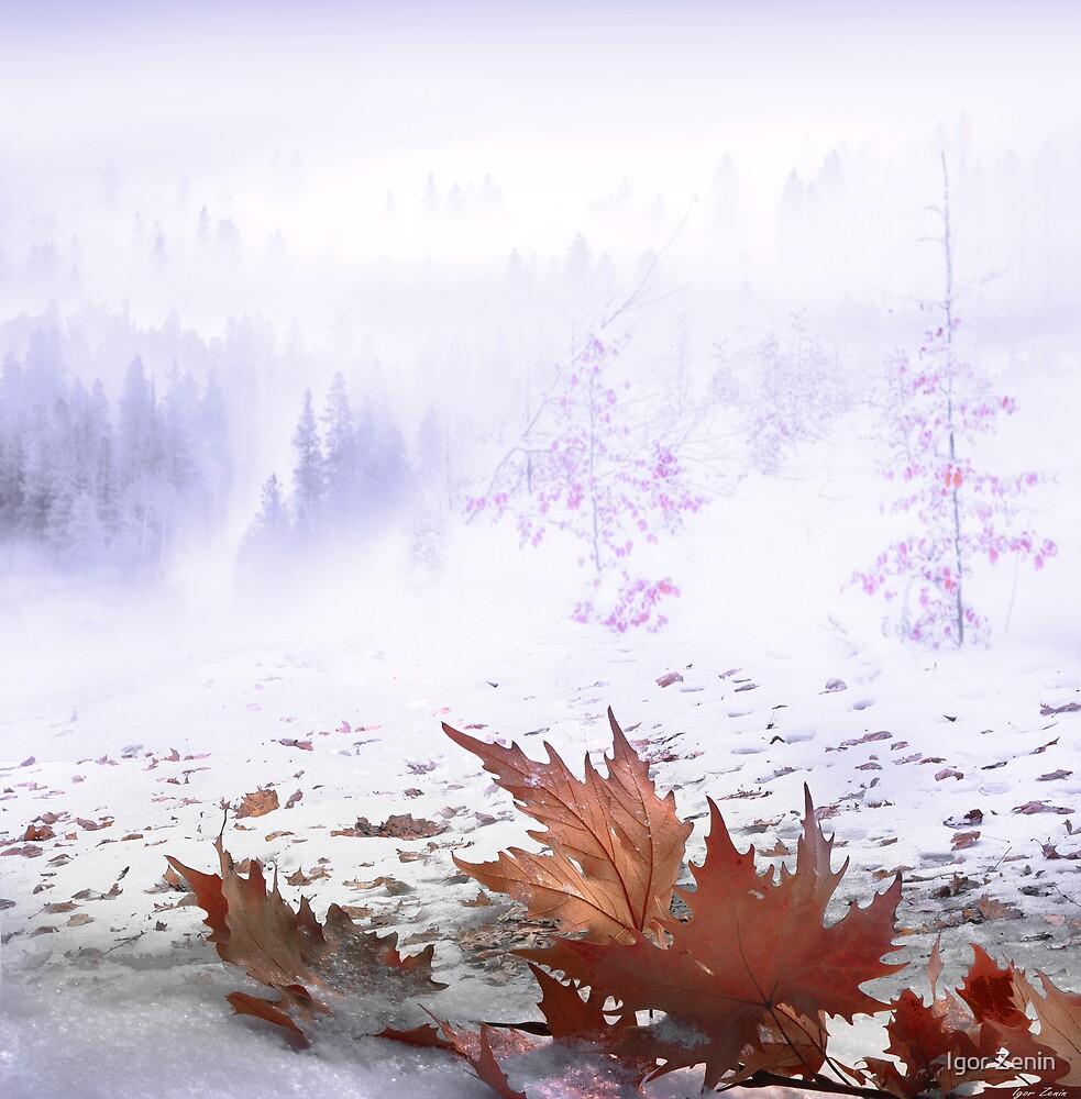 Snowy Hills by Igor Zenin