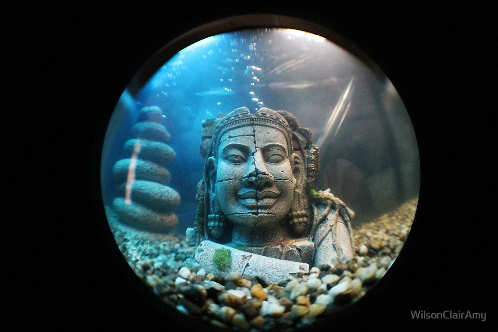FishEye Photography - Buddha by WilsonClairAmy