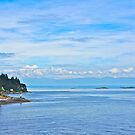 To Sea, Departure Bay, Nanaimo, BC by David Davies