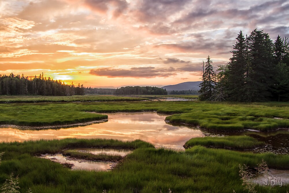 Bass Harbor Marsh by J. Day