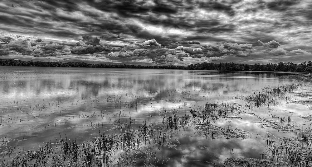 Storm Over The Mill Pond  by Thomas Young