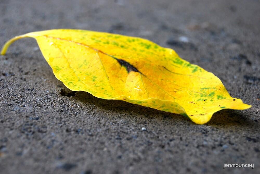Road Leaf by jenmouncey