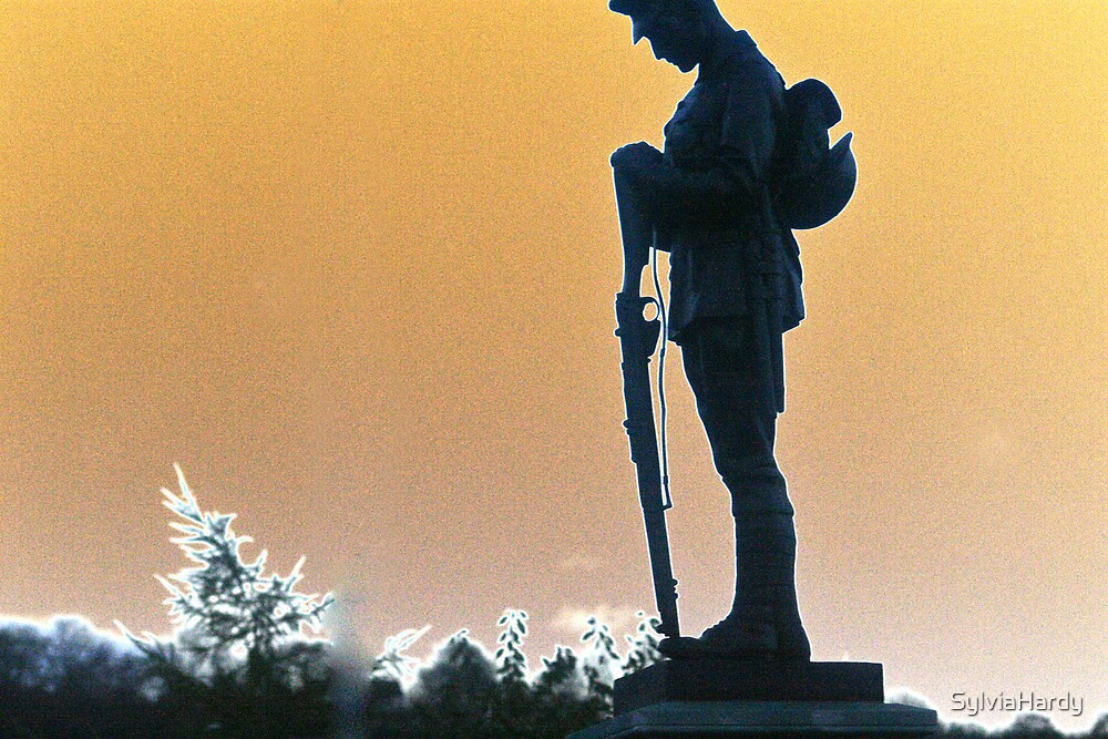 The Unknown Soldier by SylviaHardy