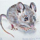 Wiebje Mouse by Rineke de Jong