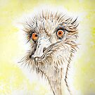 Silly EMU by Anne Gitto