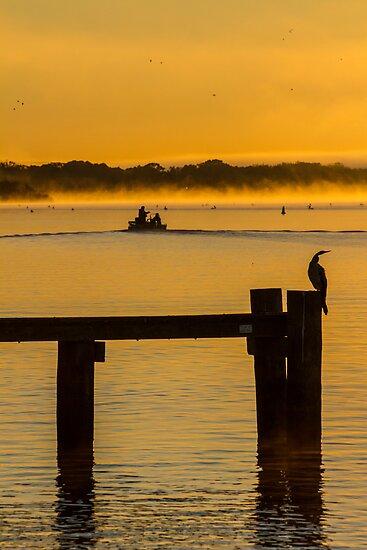 into the sunrise - Mannum SA by Dave  Hartley
