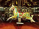 Merry-Go-Round  by Ludwig Wagner
