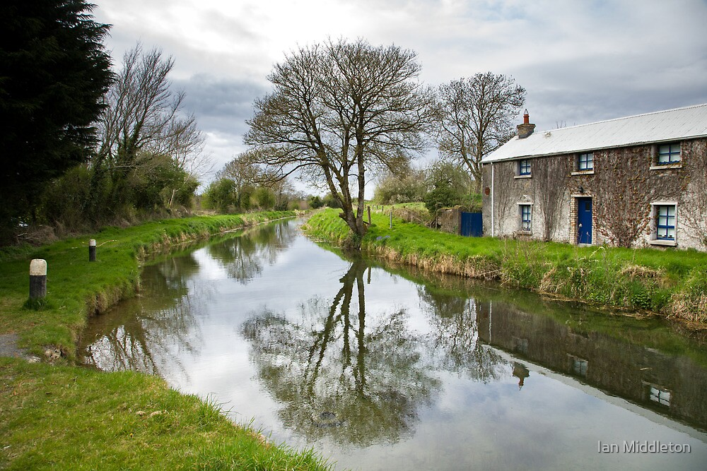Grand Canal at Miltown, Co Kildare by Ian Middleton