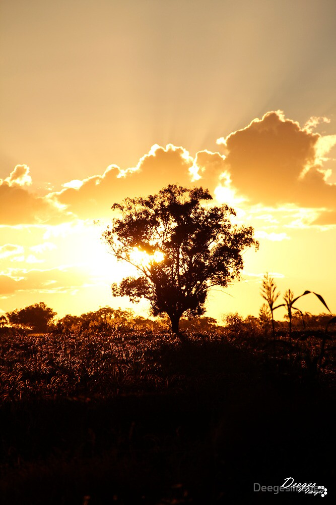 Atkamba Sunset by Deegesimages