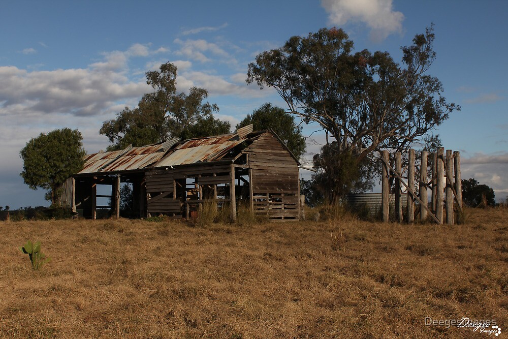 The Old Shack by Deegesimages