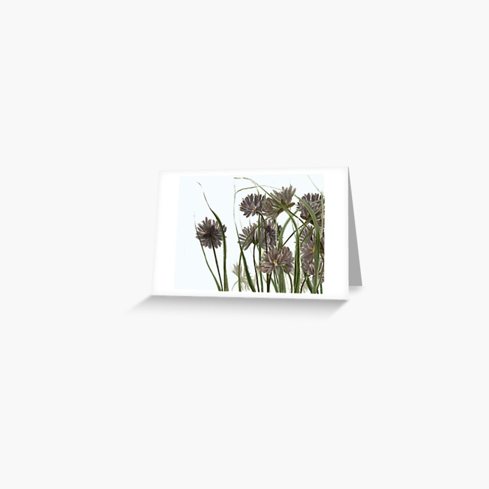 medley Greeting Card
