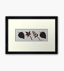 Fruit & Vegetables Leaves Framed Print