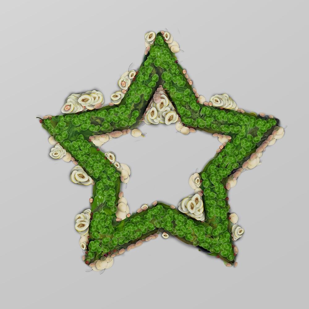 Fruit & Vegetable Green Star by vexmellon