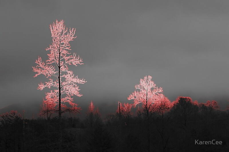 Fire Trees by KarenCee