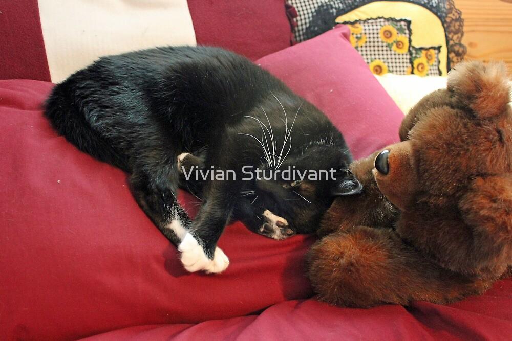 Leave Me Alone!!! by Vivian Sturdivant