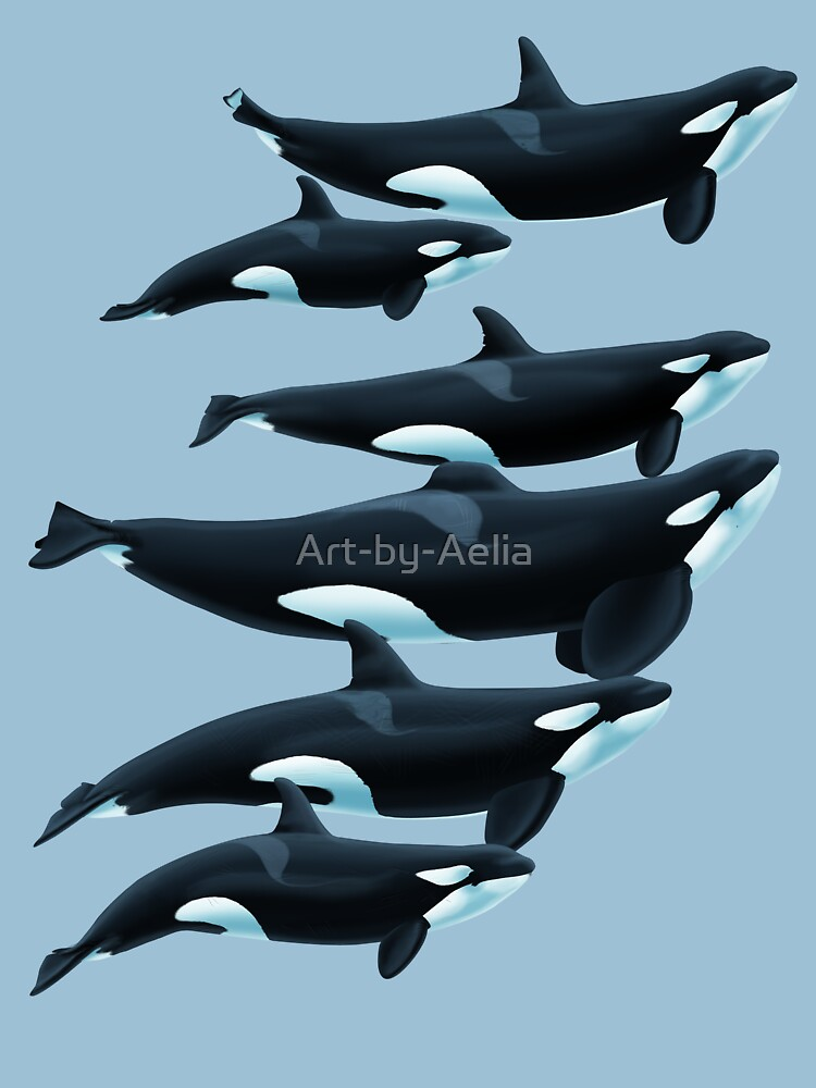 The Tenerife Orcas by Art-by-Aelia