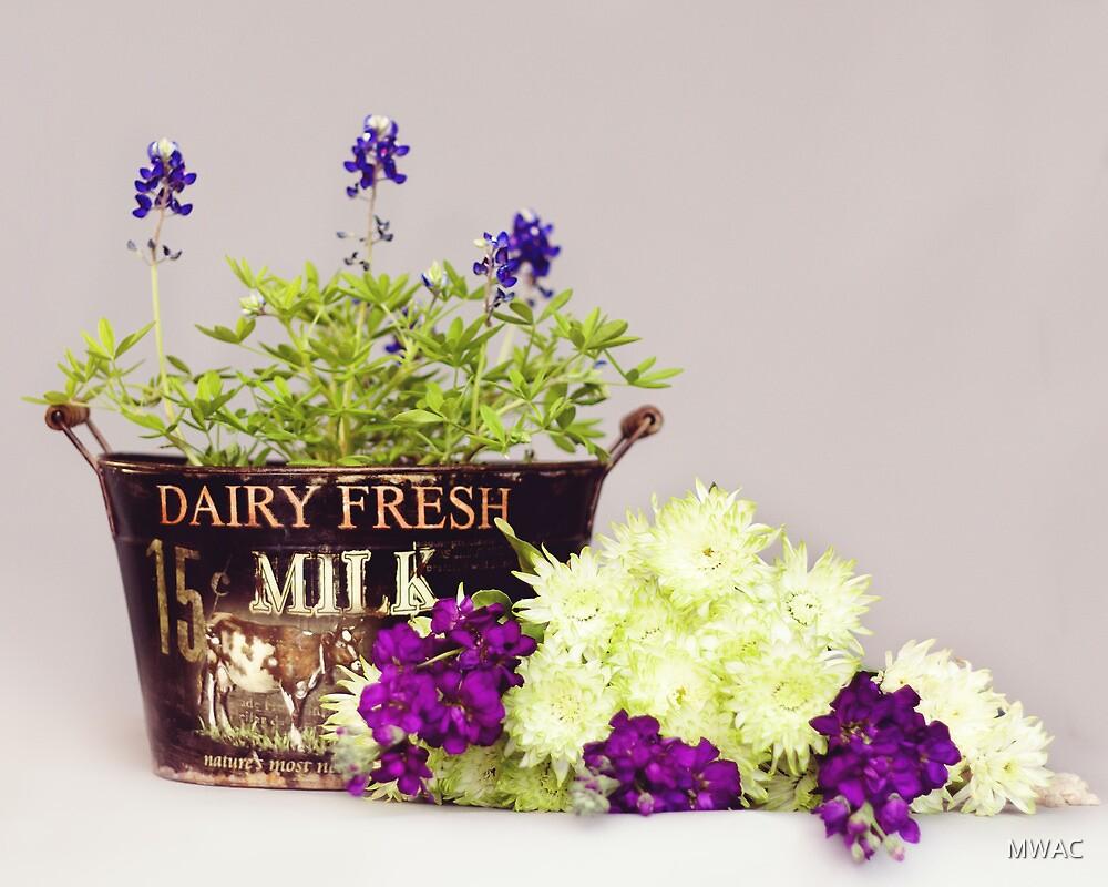 Dairy Fresh Flowers by MWAC