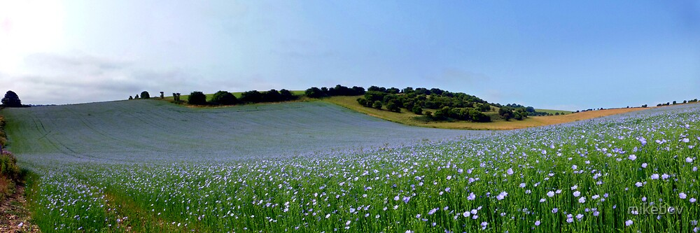 Downland Blues by mikebov