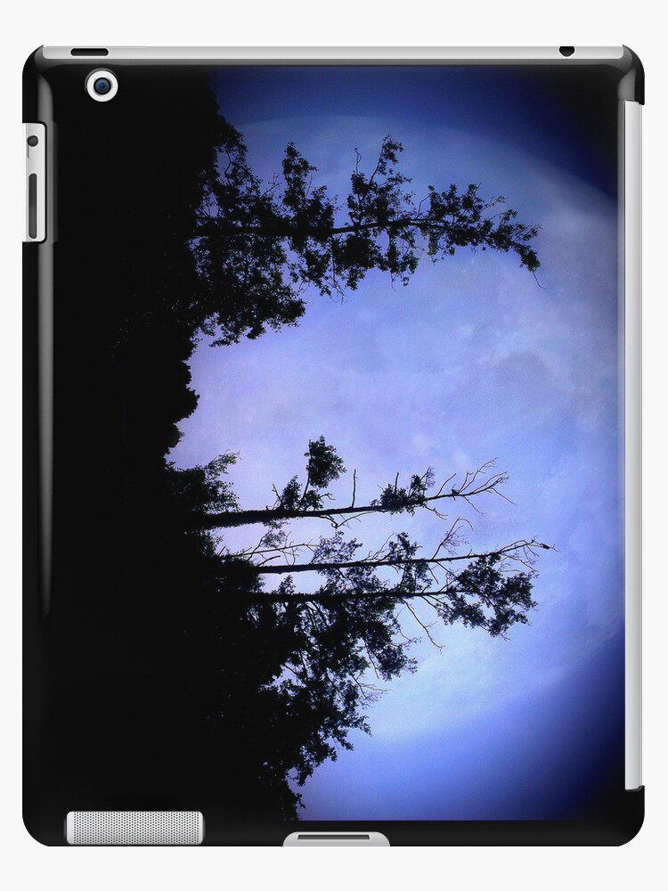 iPAD CASE Raven took the light by Darren Bailey LRPS