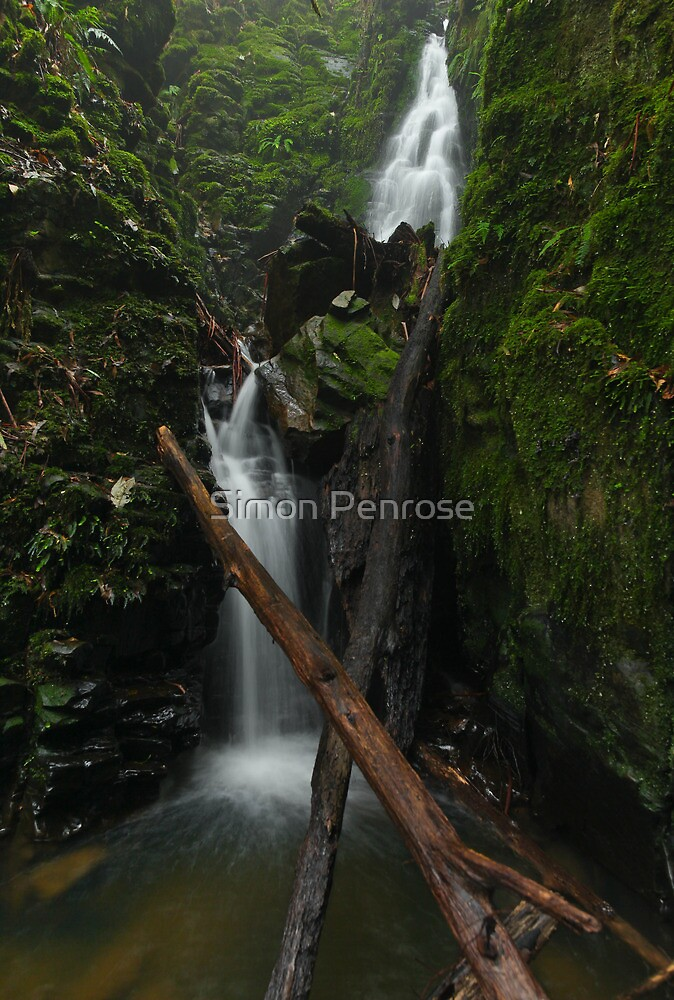 Green Chasm Falls Portrait by Simon Penrose