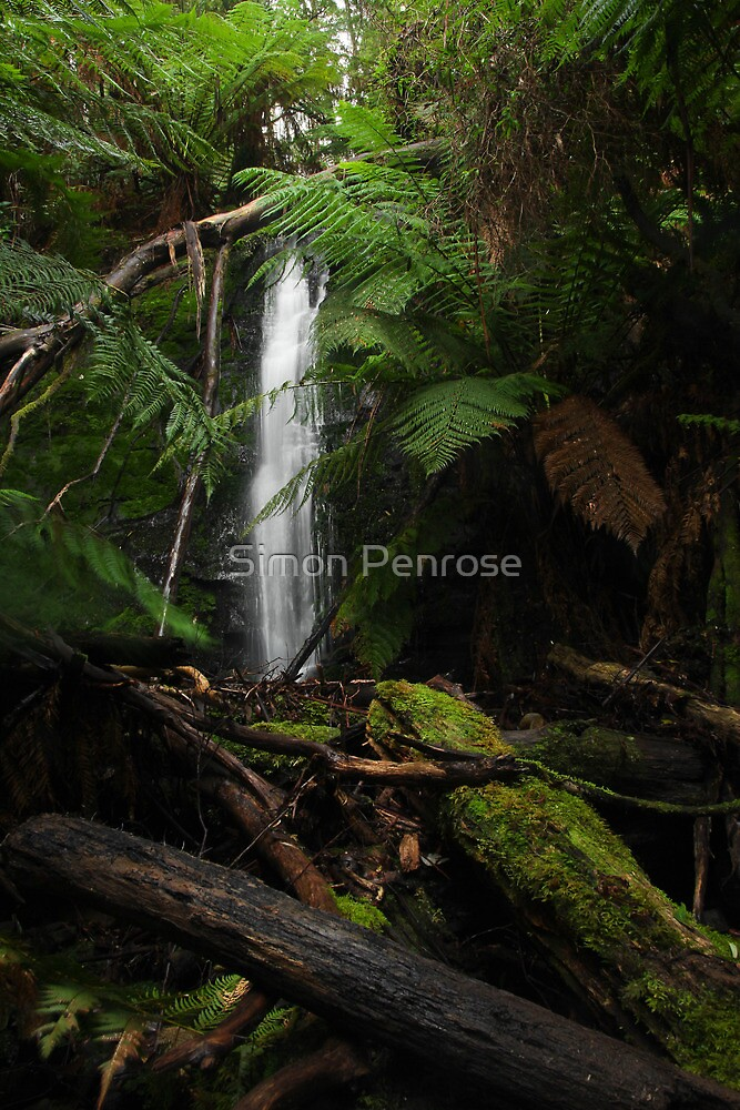 Mousetrap Falls by Simon Penrose
