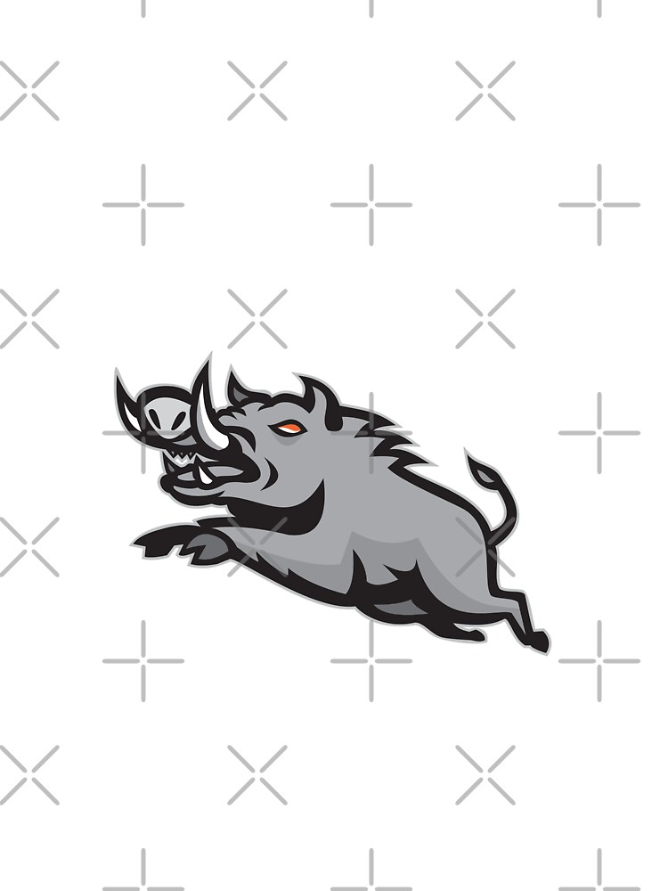 Wild Pig Boar Jumping Isolated by patrimonio