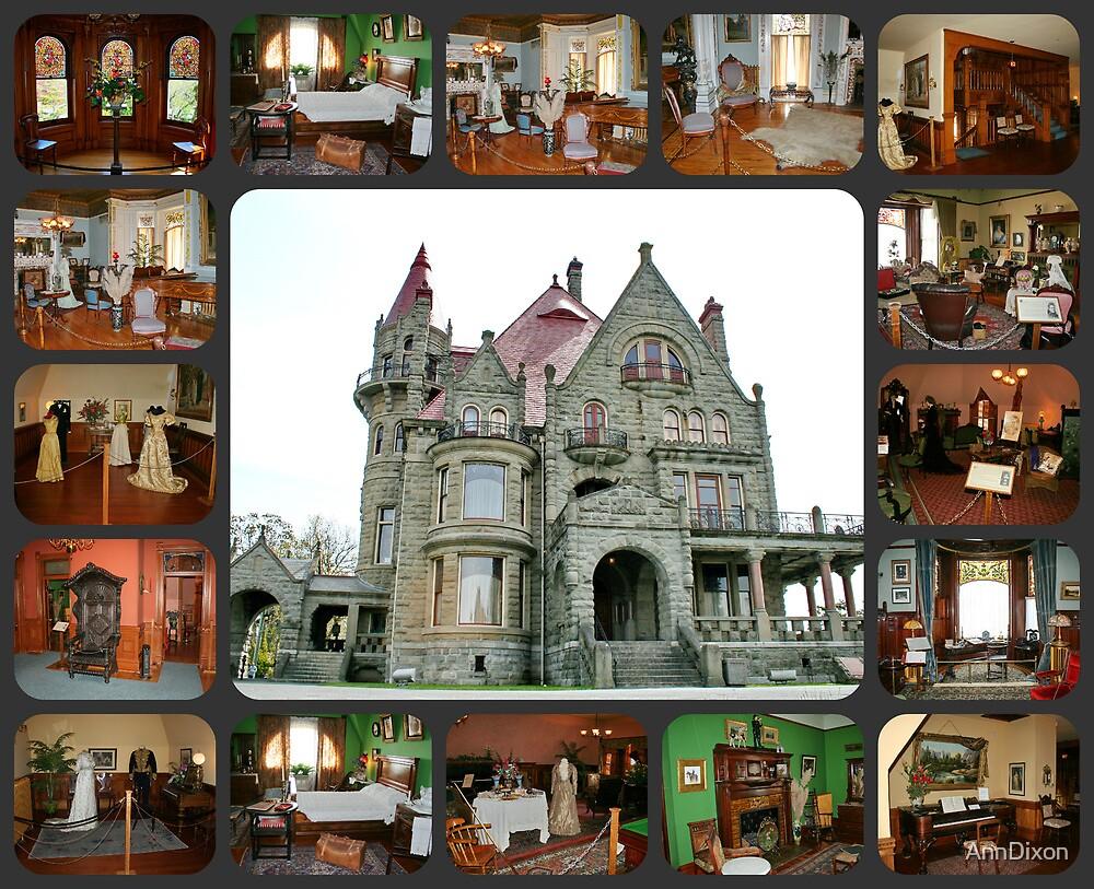 Inside CraigDarroch Castle Victoria BC Canada by AnnDixon