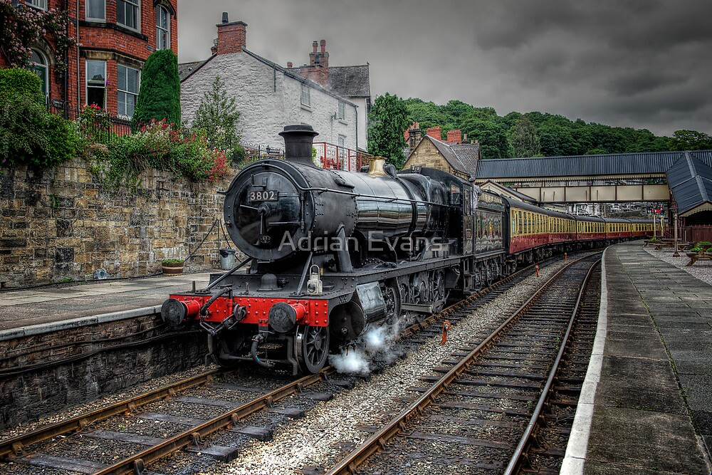 The 3802 Steam Loco by Adrian Evans
