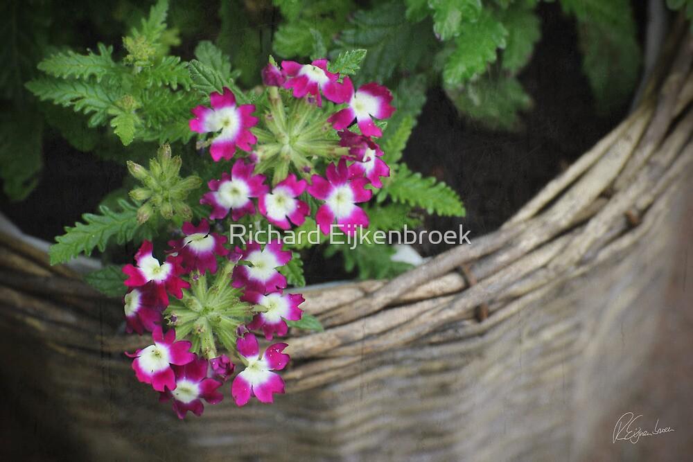 Flower Basket by Richard Eijkenbroek