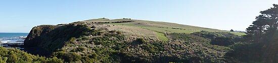 Rural Flinders Landscape by Lauren Eagle