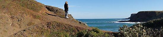 Flinders Blowhole Panorama 3 by Lauren Eagle