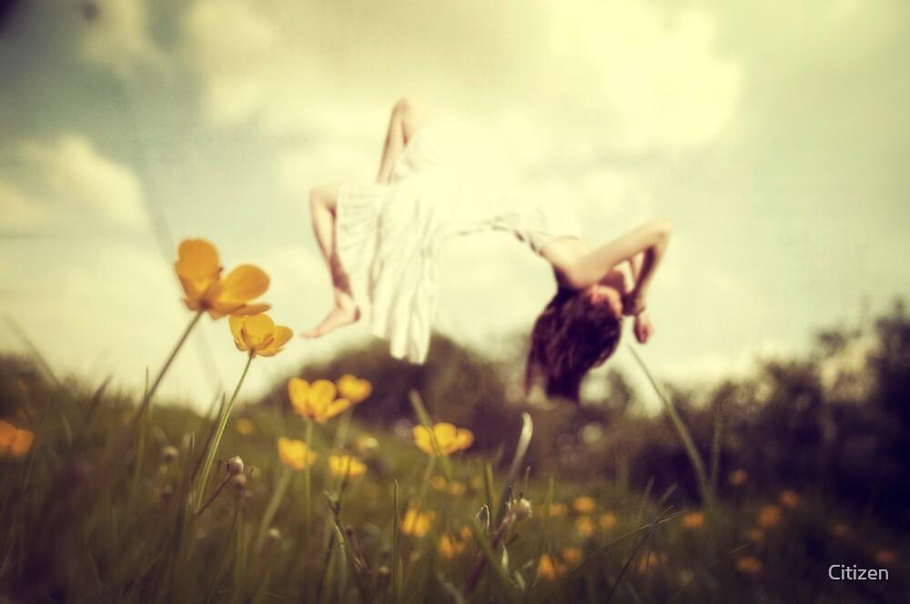 Strange Dreams of a Flower Fairy by Nikki Smith