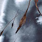 Swept by Mark Smith