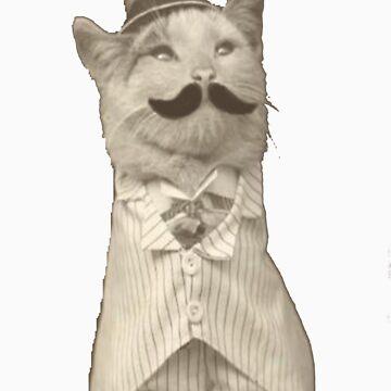 Sir Cat by Sylviaa