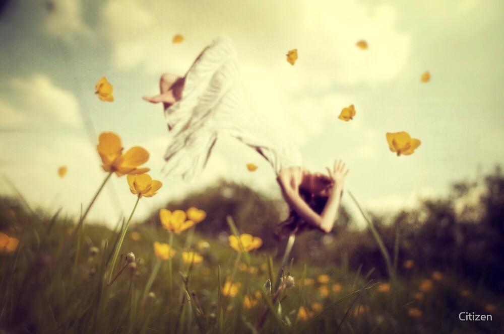 Strange Dreams of a Flower Fairy ii by Nikki Smith