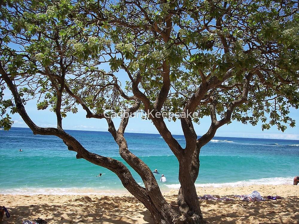 Sand Between Your Toes in Kauai, Hawaii by CadburyKeepsake