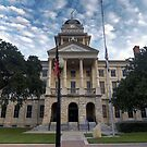 Bell County Courthouse by Terence Russell
