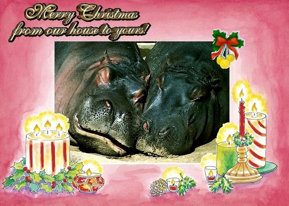 Hippopotamus Blank Christmas Greeting Card by Oldetimemercan