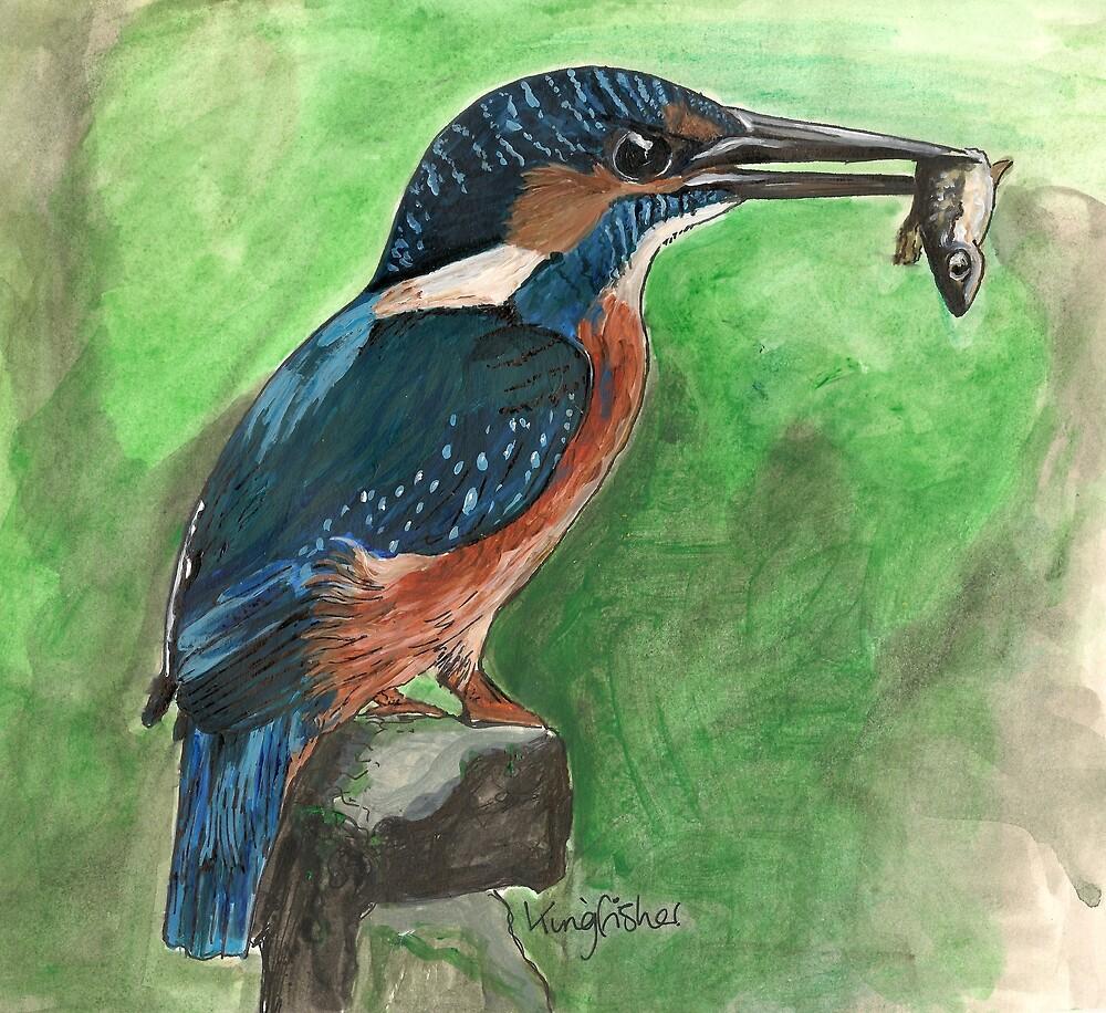 Kingfisher by Sam Burchell