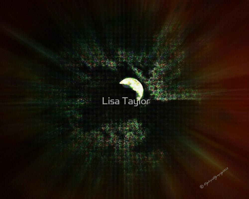 Peeping Moon by Lisa Taylor